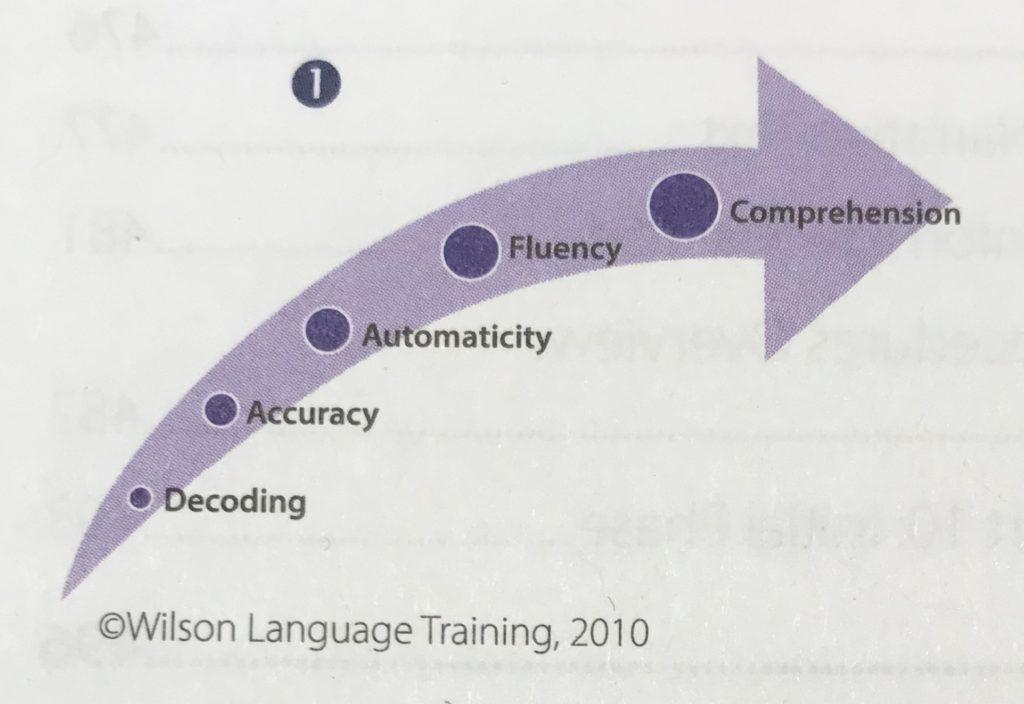 Understanding Reading Fluency – Why Speed Shouldn't Matter?