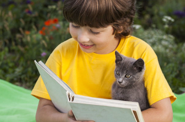 Reading Help – Your Child Can Succeed!